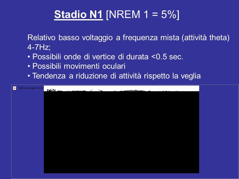 Stadio N1 [NREM 1 = 5%]
